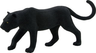 Animal Planet Panthère noire