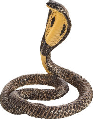 Animal Planet Cobra