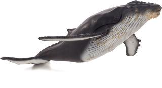 Animal Planet Baleine à bosse Grande
