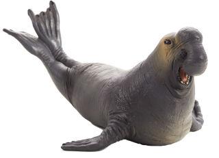 Animal Planet Eléphant de mer